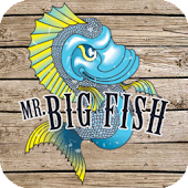 Mr Big Fish