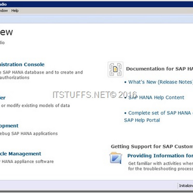 SAP HANA Studio Look and Feel