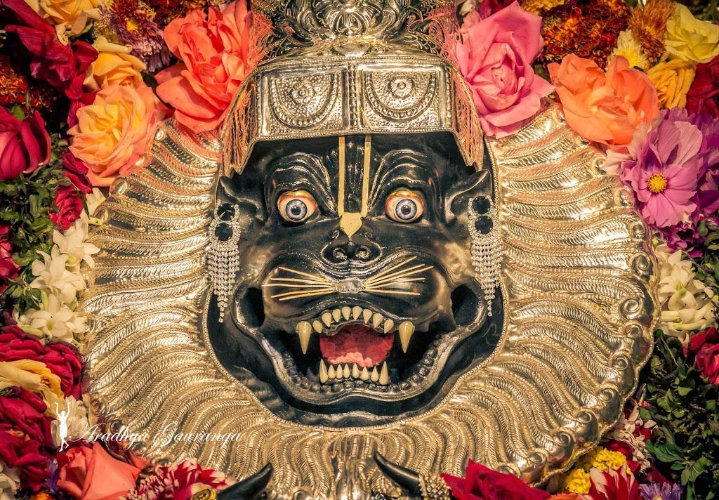 ISKCON Mayapur Deity Darshan 14 Jan 2017 (29)