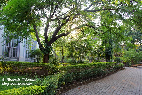 Walkway in the premises of St. Mary's Church, Pune