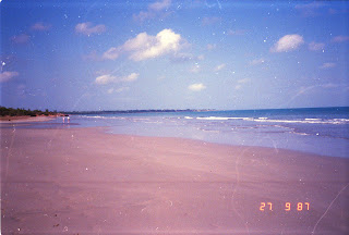 2220Darwin Beach
