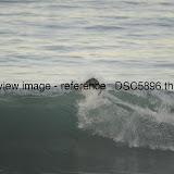_DSC5896.thumb.jpg