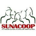 Providencia mediante la cual se designa a Sonia Anais Castro Sarmiento, como Directora General de la Dirección de Gestión Administrativa, de la Superintendencia Nacional de Cooperativas (SUNACOOP)