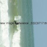 _DSC9717.thumb.jpg