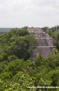 Calakmul Pyramid I.JPG