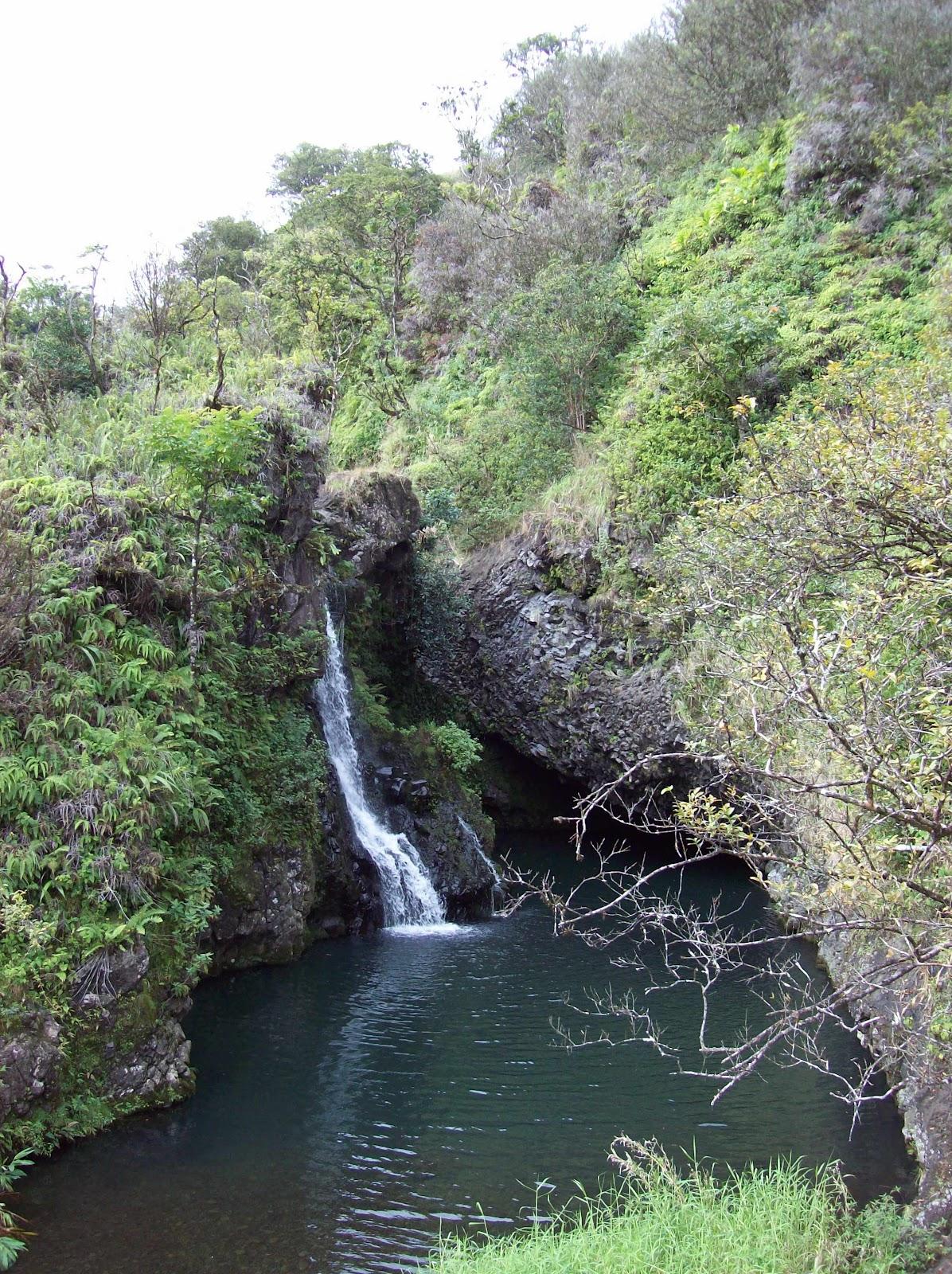 Hawaii Day 5 - 100_7436.JPG