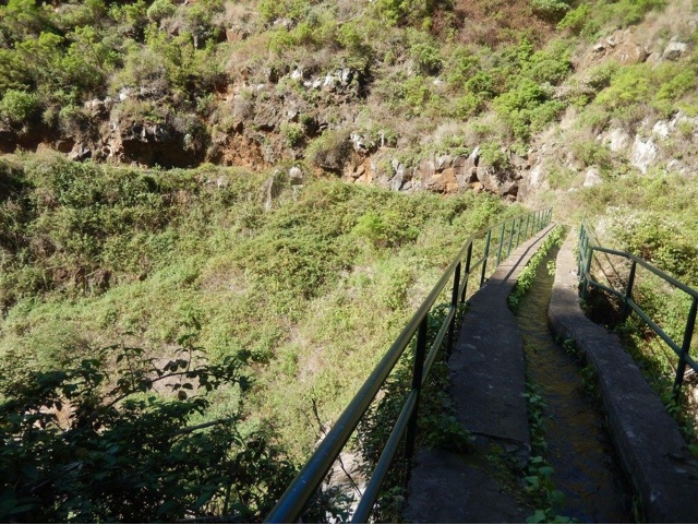 Top 10 things to do in Madeira - Lavada Walk