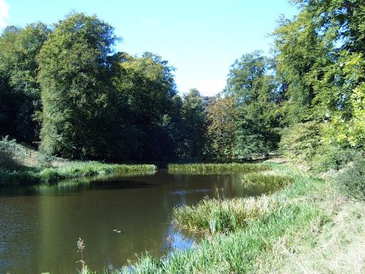 blenheim palace lake 4