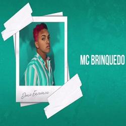 Download MC Brinquedo - Dona Encrenca