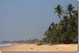Ланка (177)