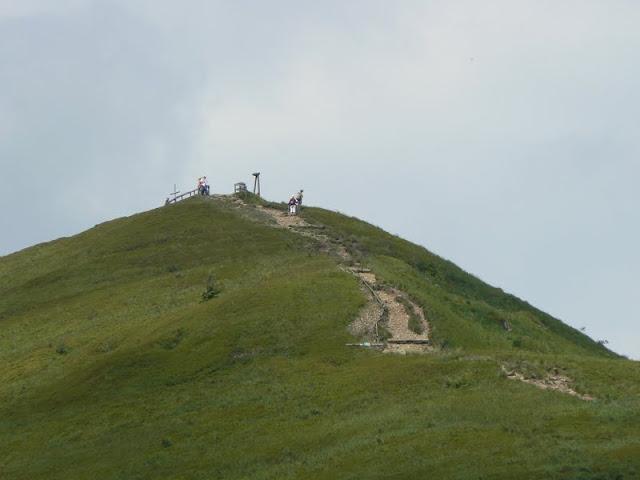 Zajęcia terenowe w dolinie Wołosatki - P1540515.JPG