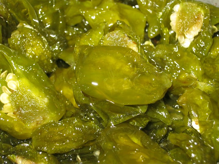 Green_hab_texture_02.JPG