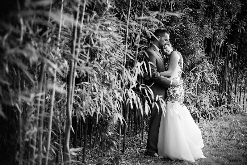 Fae and Dan - Blueflash Photography 277.jpg