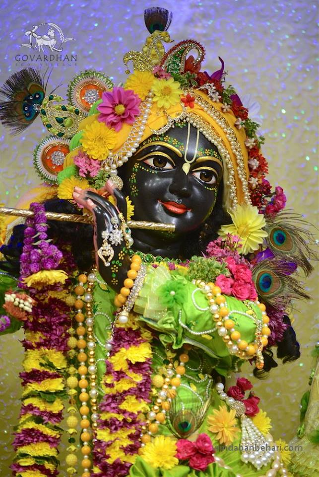 ISKCON GEV (Wada) Deity Darshan 31 Jan 2016 (8)