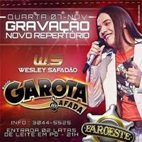 baixar cd Garota Safada - CD Promocional Verão 2013 [14 NOVAS]
