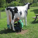 Welpen - Kinderboerderij & Crossbaan - IMG_2492.JPG