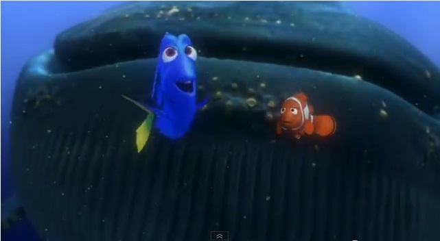 Finding Nemo in 3D movie showing