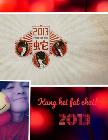 Gong Xi Fa Cai! 2013 Year of the Water Snake