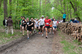 Puchar Maratonu Warszawskiego 2012
