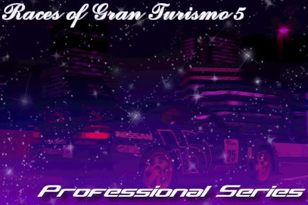 Gran Turismo 5 Professional Series