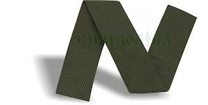 Стрічка темно - зелена (захисна) ширина 30мм.