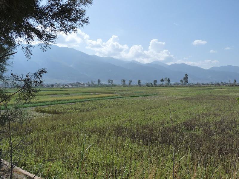 Chine. Yunnan Dali .En vélo vers le lac ERHAI - P1170753.JPG