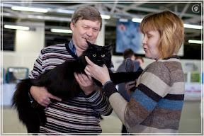cats-show-25-03-2012-fife-spb-www.coonplanet.ru-027.jpg