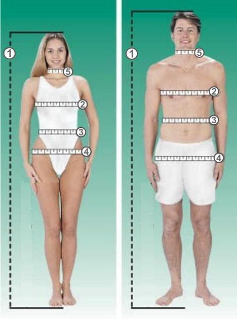 Como medir cintura cadera