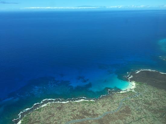 ハワイ島直行便