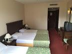 Фото 10 Palm Dor Hotel