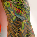 color Lizard tattoo L - tattoo meanings