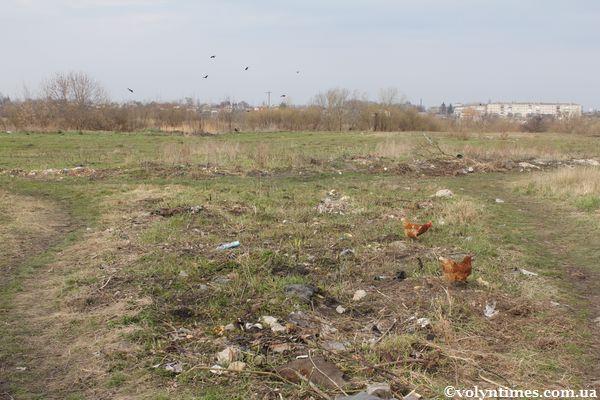 Водоохоронна зона вул. Базарна