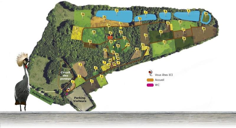 Montaigu-la-Brisette plan