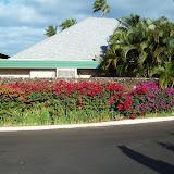 Hawaii Day 6 - 114_1738.JPG