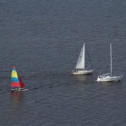 Dauphin Island Race 2013 007
