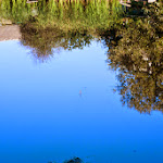 20140830_Fishing_Shpaniv_006.jpg