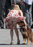 Amanda Seyfried & dog Photo