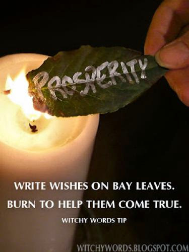 Tip Bay Leaves For Wishes