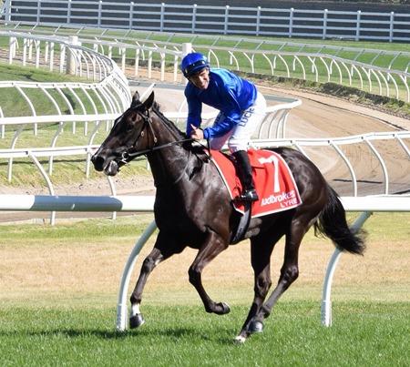 race 7_blue diamond_lyre 5