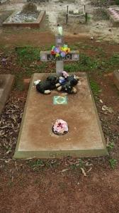 Dog Grave 002