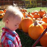 Pumpkin Patch - 114_6566.JPG