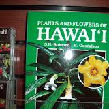 Hawaii Day 8 - 100_8056.JPG