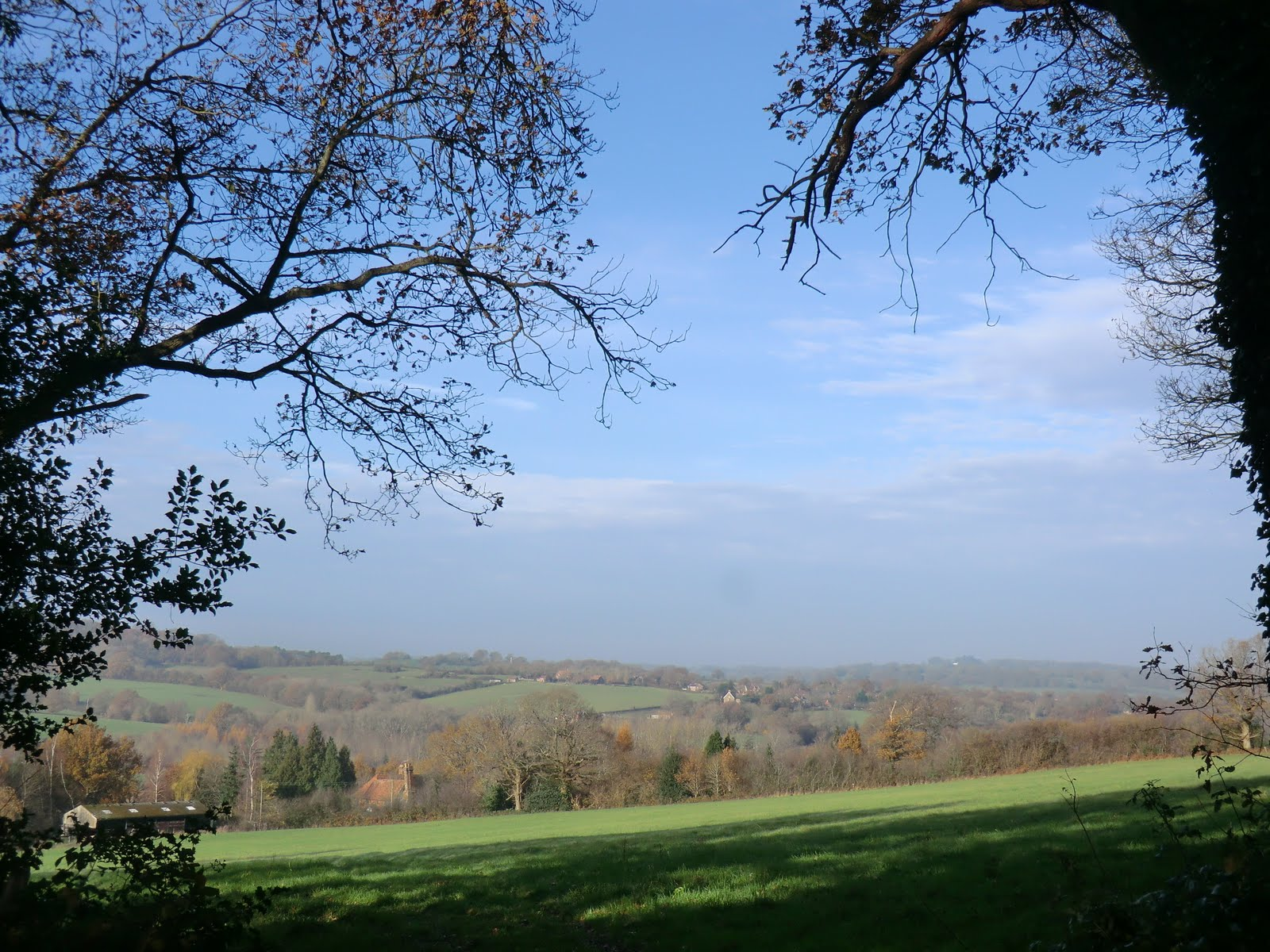 CIMG6167 The Sussex Border Path near Ashurst