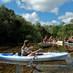 Big Cypress National Preserve: Turner River Canoe Trail