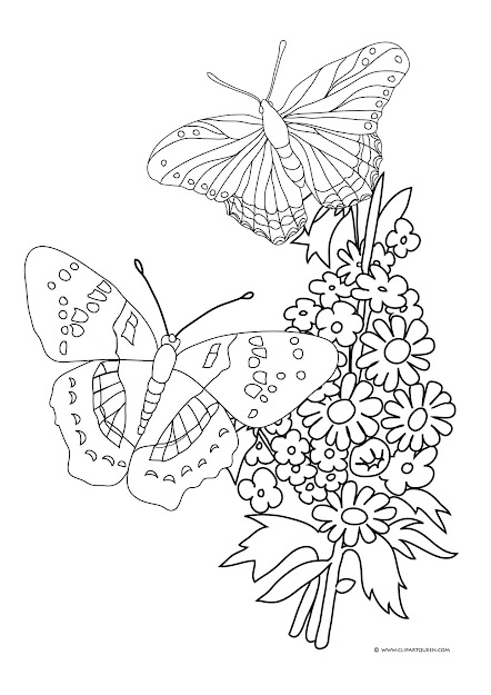 Butterflies And Roses To Color  Butterflies And Flowers