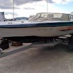 Picton Sidewinder - 2