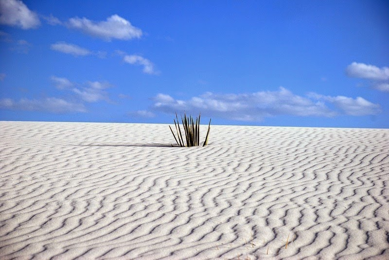 white-sands-national-monument-8