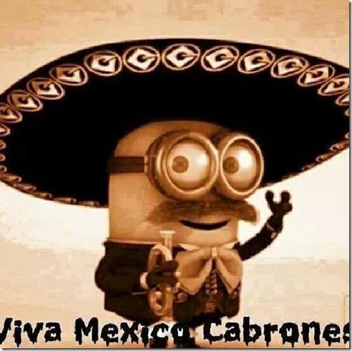 viva mexico cabrones3ssd
