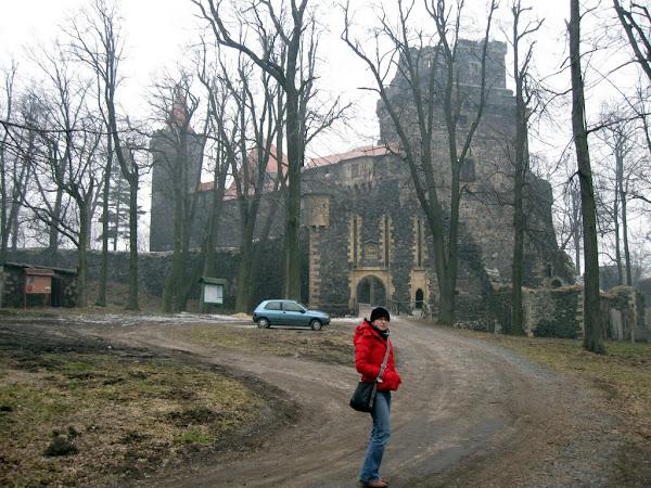 Zamek Grodziec- widok z przedzamcza