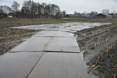 Oud en Nieuw 2012/13